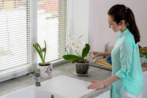ターコイズブルーのシャツを着たブルネットは、台所の窓辺の透明な鍋にカップから蘭を注ぎます