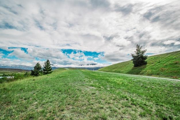 屋外の田園の草原自然。農村の畑の風景。