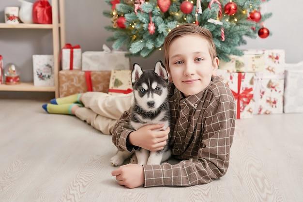 犬ハスキーの子犬とクリスマスツリーの子少年。