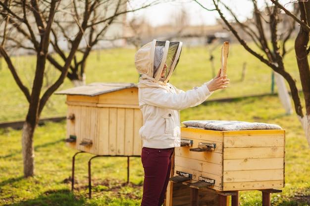 冬の後、養蜂家の少女がミツバチと一緒に働き、ミツバチの巣箱を検査しています