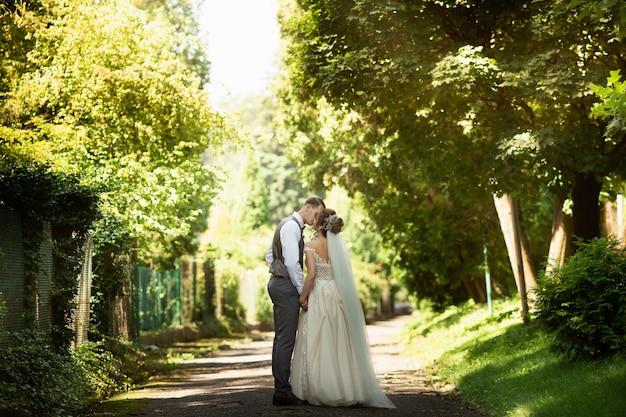 日当たりの良い公園を歩いている結婚式のカップル。新婚夫婦は手をつないでいます。背面図