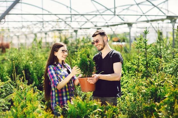 若いカップルが一緒に立って、小さなモミの木とポットを保持し、植物を見て