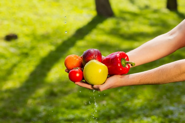 ぼやけた緑の背景に果物や野菜を保持している農夫の手のクローズアップ