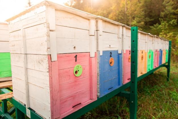 メタリックグリーンスタンドに木製色の蜂の巣