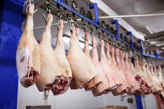 食品加工工場の冷蔵室に保管されている豚の死体を半分にカット。