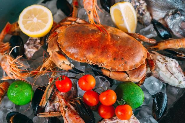 Морепродукты на льду. крабы, осетры, моллюски, креветки, рапана, дорадо, на белом льду.