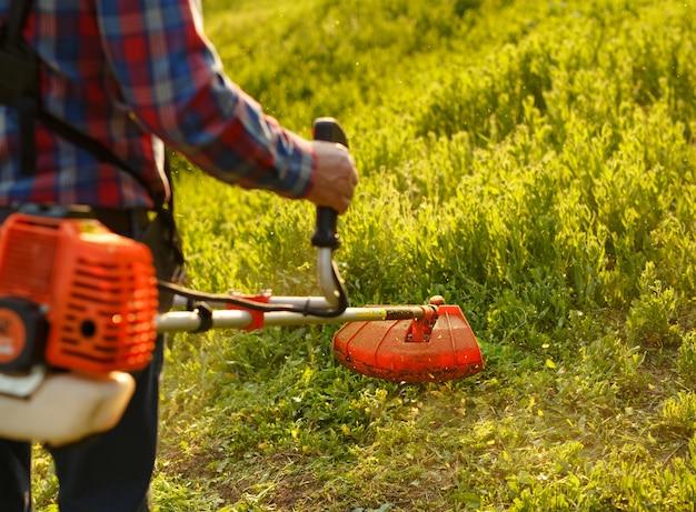 Кошение триммер - работник стрижка травы в зеленом дворе на закате.