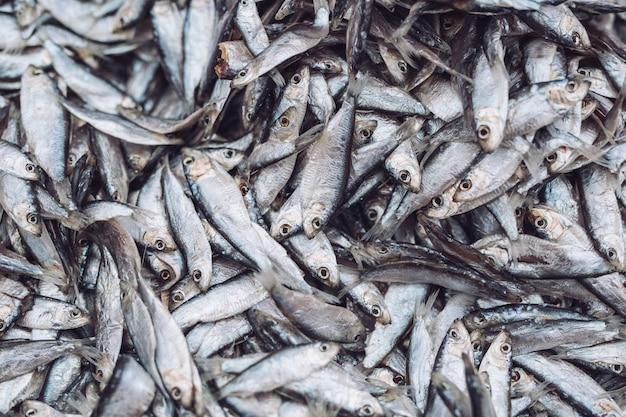 魚市場で魚のスプラット。新鮮な有機魚。