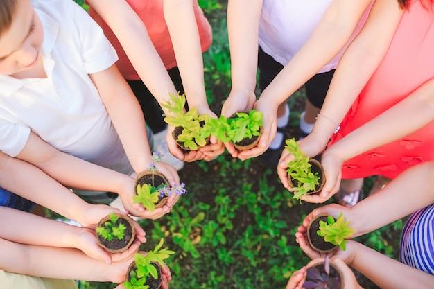 Дети с растениями в вазонах