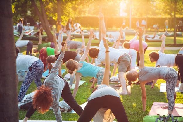 Группа молодых людей занимается йогой в парке на закате.