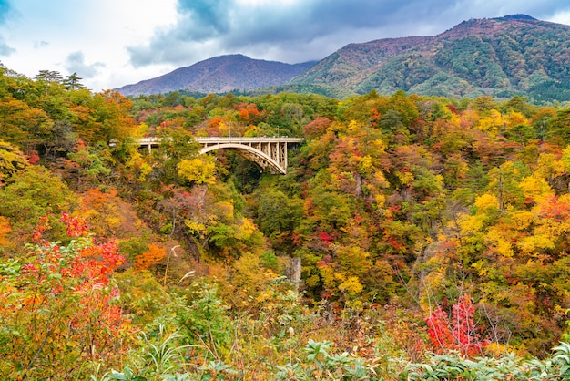 宮城県鳴子市の大深沢橋のある鳴子峡の紅葉の美しい紅葉。