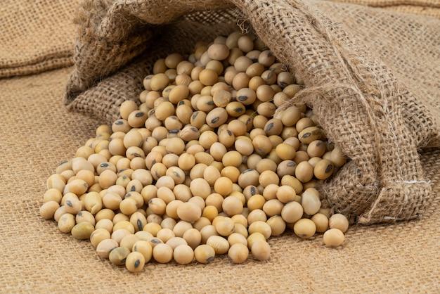 荒布を着た袋に大豆のクローズアップ。大豆は、エンドウ科の年間豆類であり、人々にとって植物タンパク質の重要な供給源です。