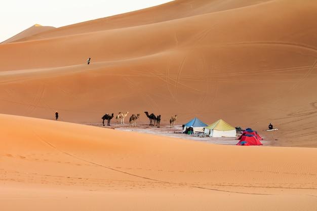 サハラ砂漠のキャンプの眺め