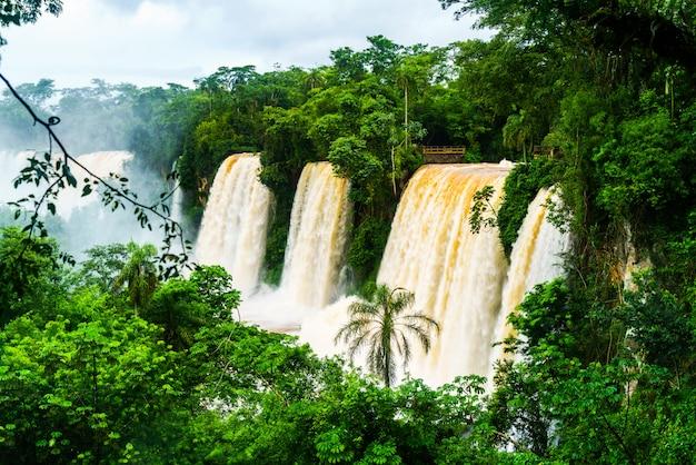 ジャングルのイグアスの滝