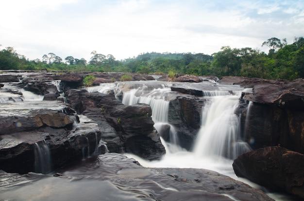 森を流れる美しい滝の流れ。