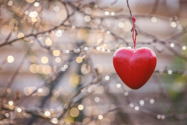 Концепция любви, символ любви формы сердца, висит на ветке дерева в винтажном с копией пространства