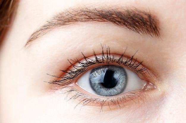美しい女性の青い目のクローズアップ