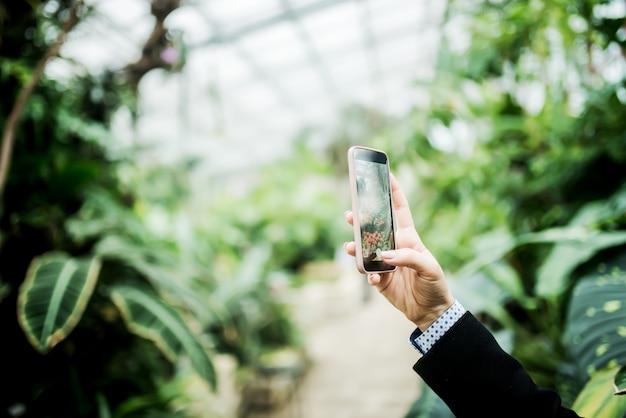 温室で写真を撮る