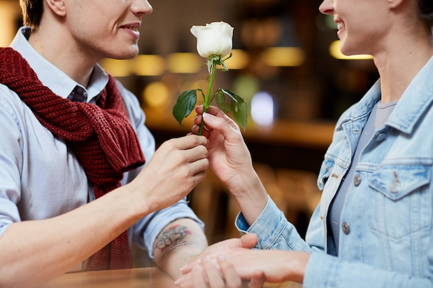 ロマンチックなバラ