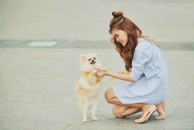 Тренировочная собака