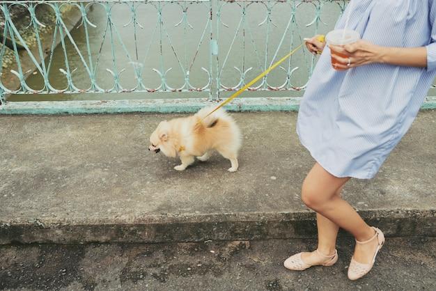 犬と一緒に街を歩く