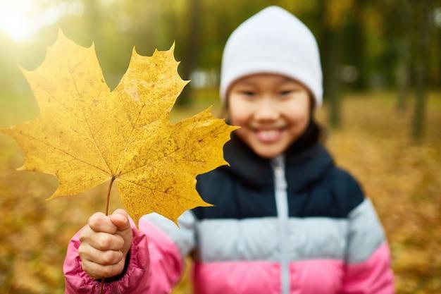 秋が来ました