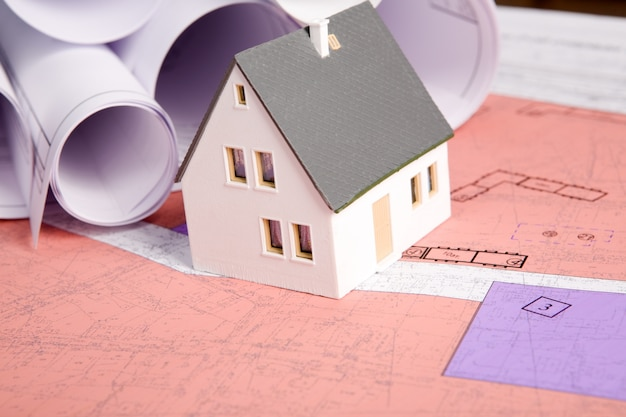 Измерения схемы подробно розовые жилища