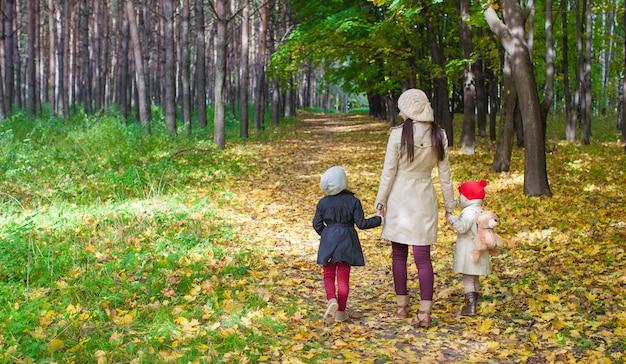 秋の公園で小さなかわいい女の子と若い母親