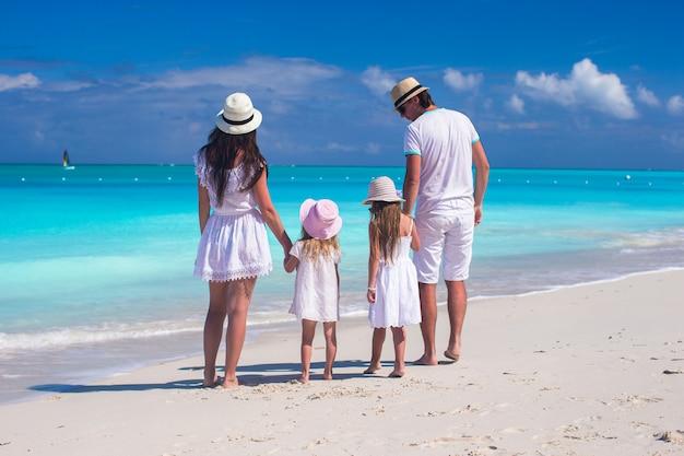 熱帯のビーチの中に若い美しい家族の背面図