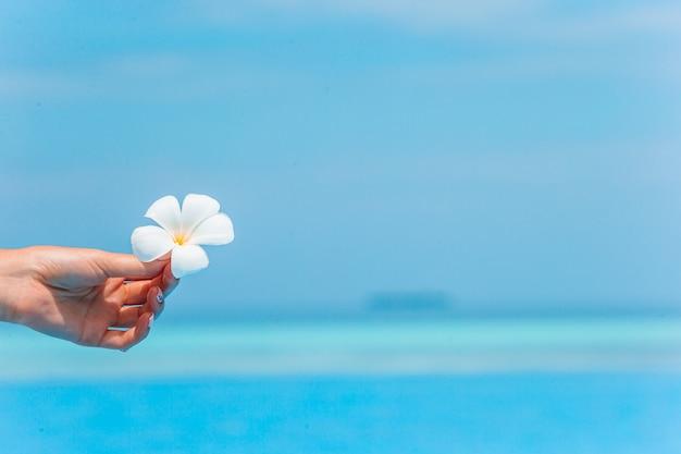熱帯の花と青いプールで手します。