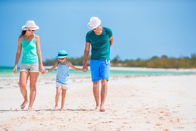 夏休み中に白いビーチで若い家族