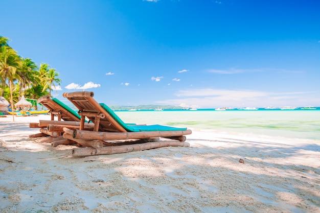 Кокосовая пальма на песчаном пляже