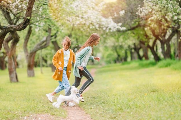 Маленькие улыбающиеся девочки играют с щенком в парке