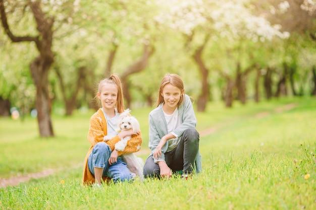 Маленькие улыбающиеся девочки играют и обнимают щенка в парке