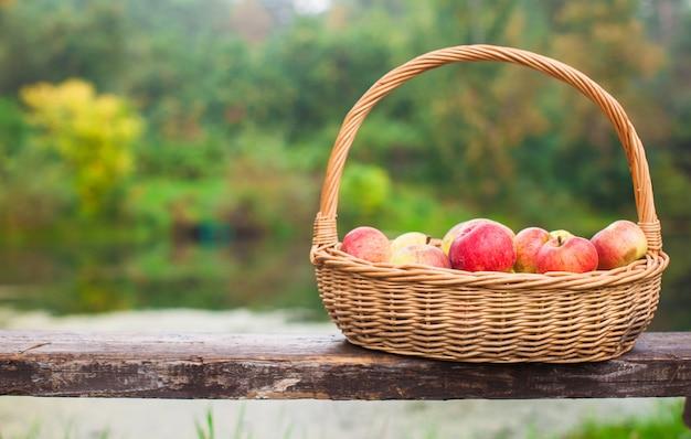 湖のそばのベンチに赤と黄色のりんごと大きなわらのバスケット