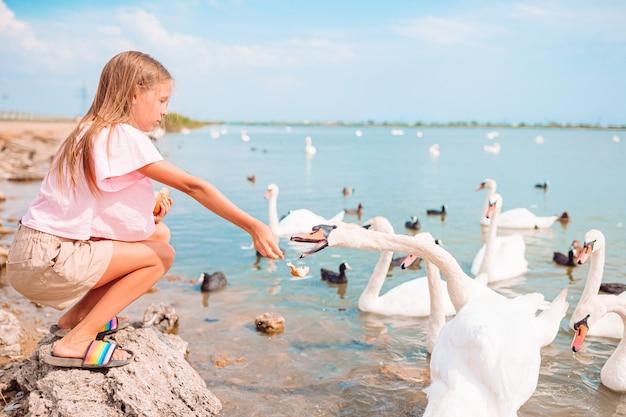 白鳥とビーチに座っている小さな女の子
