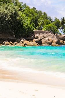 セイシェルの美しいエキゾチックな熱帯のビーチ