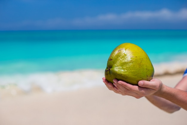 ビーチでの手でココナッツのクローズアップ
