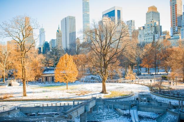 Красивый центральный парк в нью-йорке