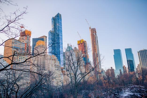 ニューヨーク市の美しいセントラルパーク