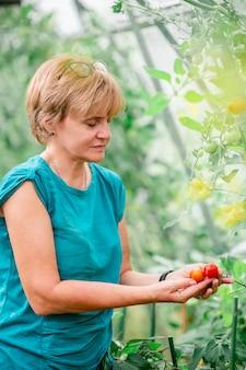 緑と温室の野菜のバスケットを持つ女性。収穫する時。