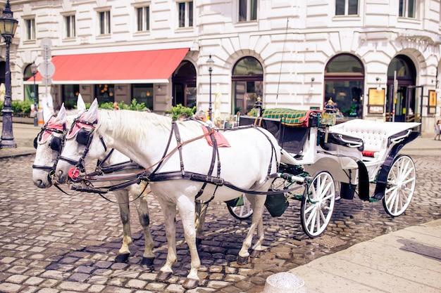 ウィーンオーストリアの伝統的な馬コーチフィアケル