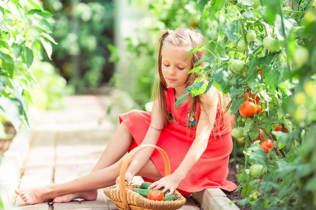 かわいい女の子は温室で作物きゅうりとトマトを収集します