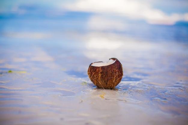 晴れた日に熱帯の白い砂浜にココナッツ