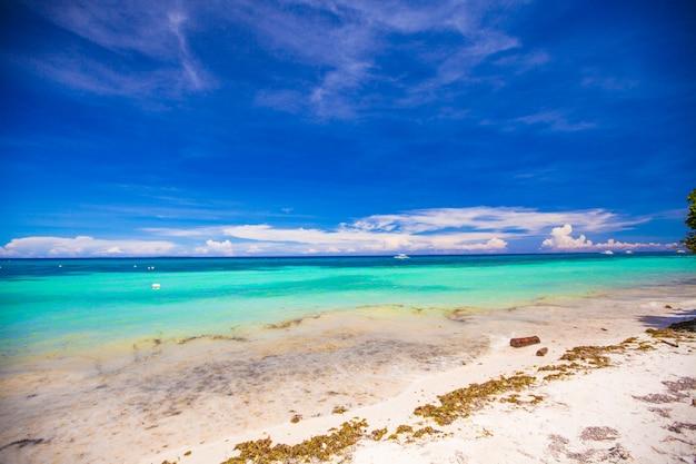 青緑色の水と白い砂浜のある完璧な熱帯のビーチ