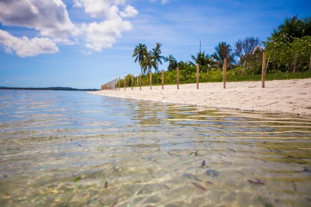 青緑色の水と砂漠の島の白い砂浜が広がる理想的な熱帯のビーチ