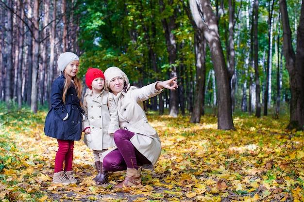 暖かい晴れた日に黄色の秋の森で魅力的な散歩を楽しんでいる若い母親と彼女の愛らしい娘