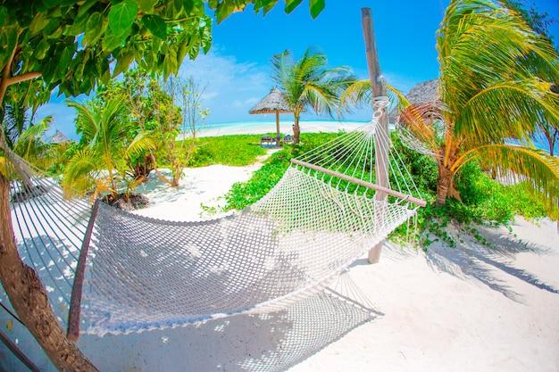 明るい晴れた夏の日の熱帯の楽園でヤシの木の下でロマンチックな居心地の良いハンモック