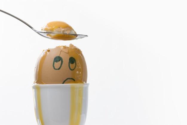 不幸壊れた卵