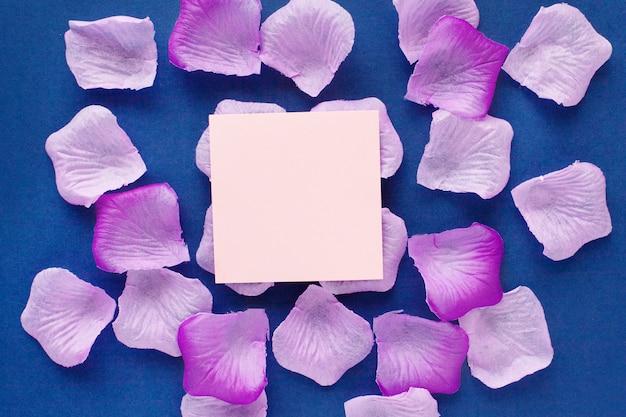青色の背景に美しいピンクの花びら